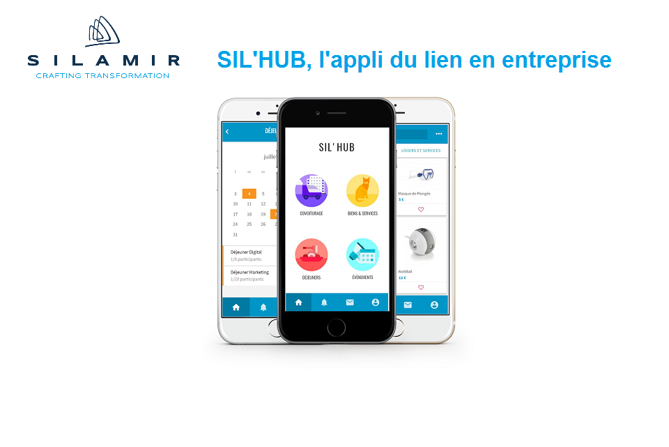 Silhub situation web
